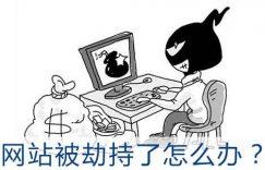 域名劫持网站权重快速排名